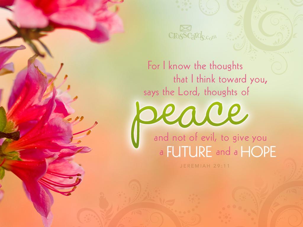 Must see Wallpaper Marble Bible Verse - 30-december-2011-jeremiah-peace  Pic_469440.jpg
