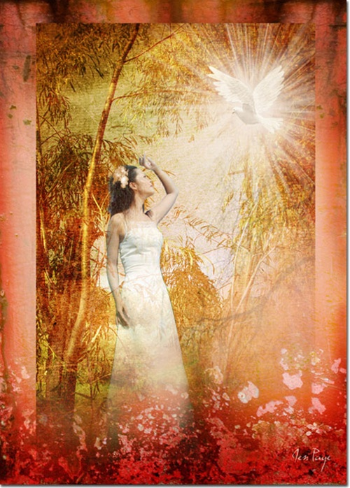 5 November 2012 enter HIS garden by jennifer page