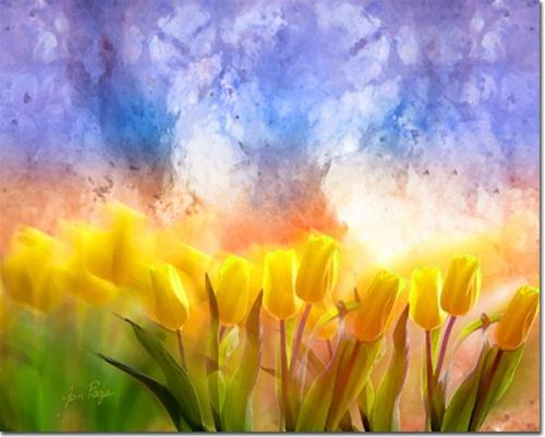 5 November 2012 heaven's garden by jen