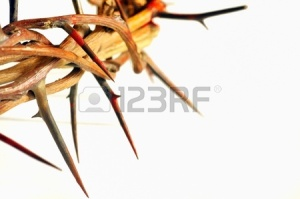 16480301-crown-of-thorns-isolated-on-white